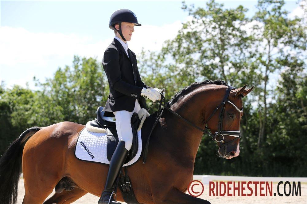 17-årige Anders Hoeck har 5 heste i finalen
