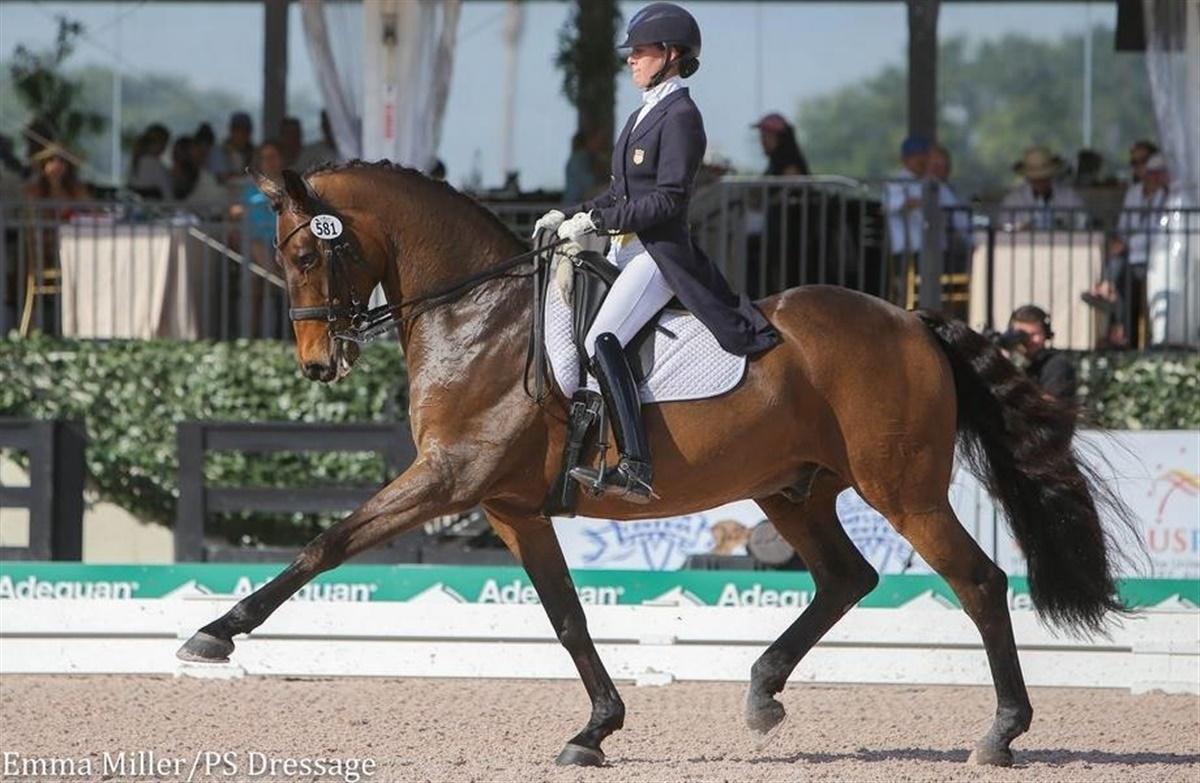 Dv hesten lonoir med i pengene for 4 4422 c