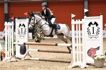 Scandinavia Jumping Tour