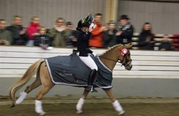 Horseworld Cup for ponyer