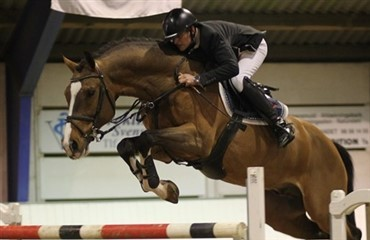 Hingsteshow Nord med flot opbakning