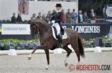 Dressage Stallion of the Year: Vitalis