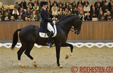 Super stemning i Blue Hors Grand Prix Cup