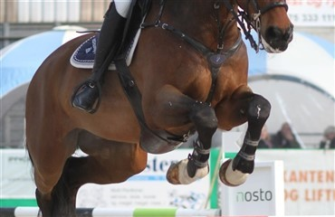 L/M Danmarks Cup for heste i Fredericia Rideklub