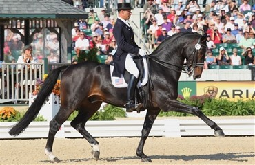 Steffen Peters kommer ikke til World Cup